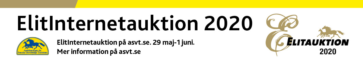 Elitauktion